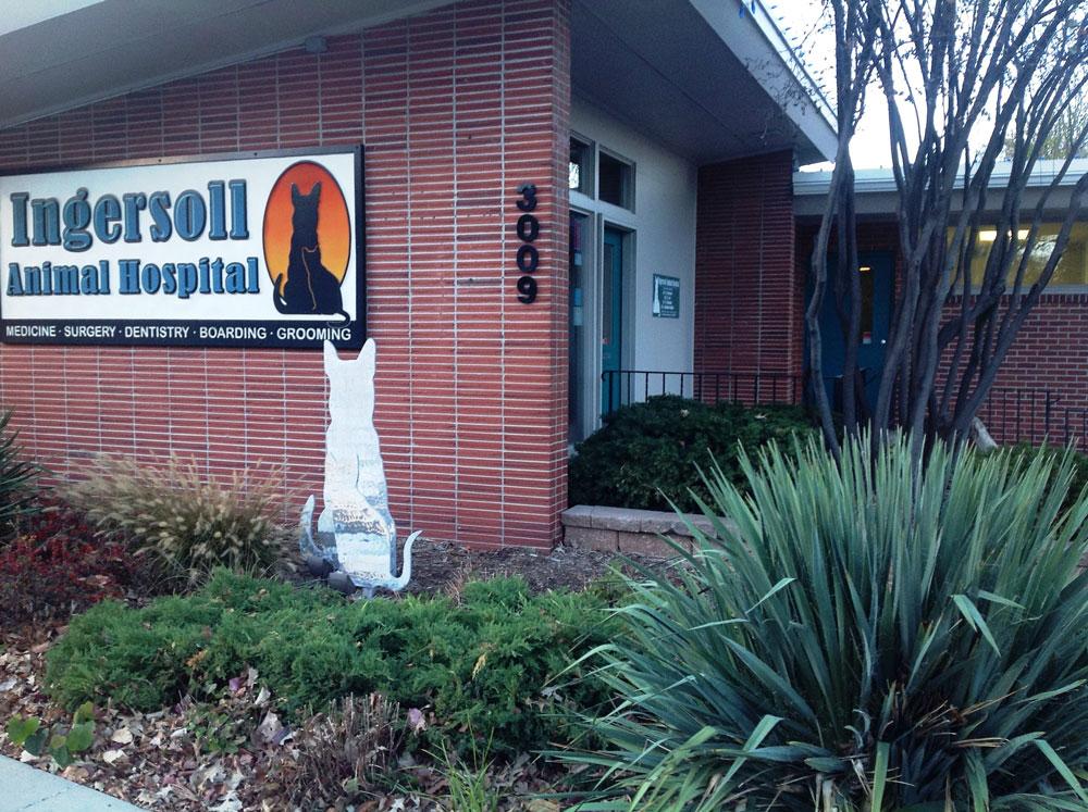 Ingersoll Animal Hospital